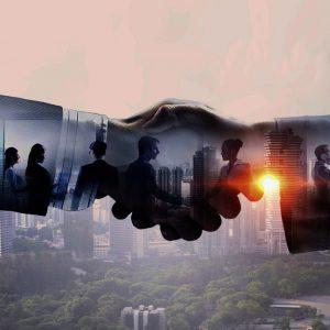 Internationale Geschäftsentwicklung